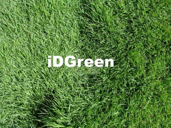 Gazon en plaque pour votre jardin la pelouse for Prix du gazon en plaque