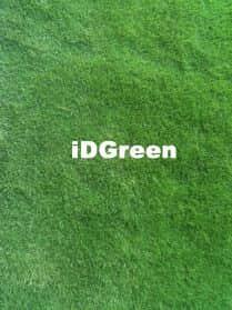 gazon zoysia parc idgreen vente gazon en plaque et gazon en rouleaux bordeaux france. Black Bedroom Furniture Sets. Home Design Ideas