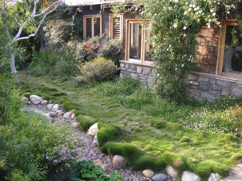 pelouse et gazon en plaque id bermuda et gazon zoysia livraison domicile de gazon en. Black Bedroom Furniture Sets. Home Design Ideas