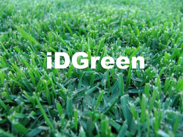 gazon en plaque pour votre jardin la pelouse imm diatement les gazon a faible entretien tres. Black Bedroom Furniture Sets. Home Design Ideas